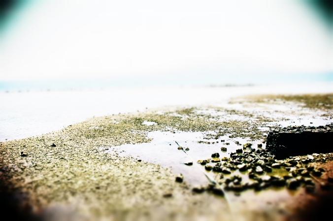 Panoramic Sea